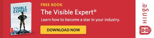 Hinge Visible Expert