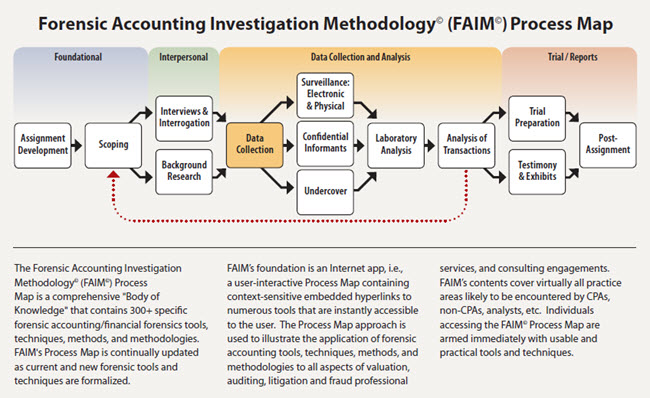 Forensic Accounting Academy™
